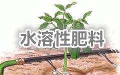 "<a href=""http://www.hengzhixin.cn/Fertilizer"" rel="