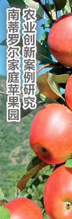 世界粮农组织网站