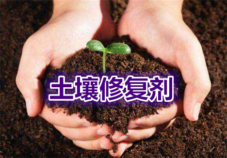 "<a href=""http://www.hengzhixin.cn/soil"" rel="
