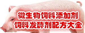《微生物饲料添加剂、饲料发酵剂bob电竞官网官方主页大全》