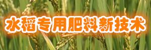 《水稻专用肥料新技术》 国际新技术资料网 恒志信