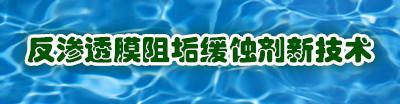 反渗透膜阻垢剂制造方法