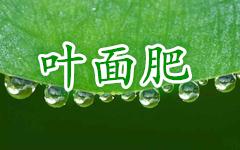 "<a href=""http://www.hengzhixin.cn/Foliarfertilizer"" rel="