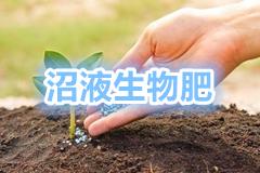 """<a href=""""http://hengzhixin.cn/Fertilizer-zhaofei"""" target=""""_blank"""" utype=""""1#1077"""">12.《沼液沼渣有机肥配方集》</a>"""